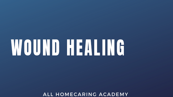 Wound Healing Course